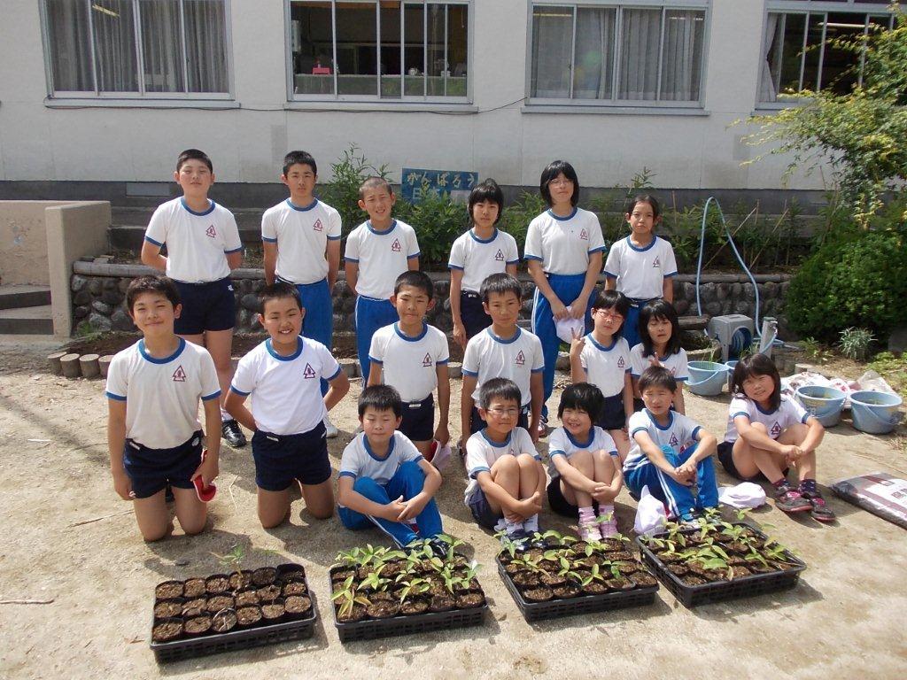 鳳来東小学校で 全校生徒17名,教師,評議員の皆さんと津波に強いどんぐ... 鳳来東小学校で ど
